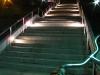 stairwaytotrump