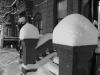 snow posts, 1-26-2011