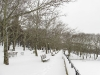 snow12190912