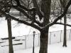 snow12190915