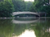 bridgecentralpark1