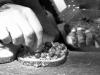 blueberry-peanutbutter-sandwich